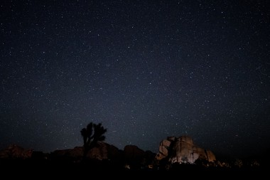 Joshua Tree National Park - Night Sky